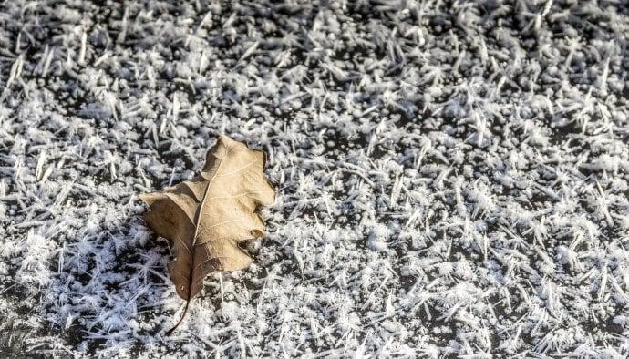 Winterlandschaft Naturfotografie